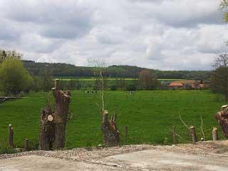 Grands Gîtes  en Normandie - Vue sur la campagne